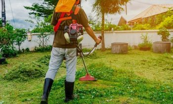 How to choose string trimmer